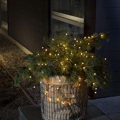 Mini-Lichterkette mit 80 Leuchten Sponsored Sponsored Mini fairy lights with 80 lights Christmas Porch, Farmhouse Christmas Decor, Noel Christmas, Outdoor Christmas, Rustic Christmas, Winter Christmas, Christmas Lights, Christmas Garden, Christmas Crafts