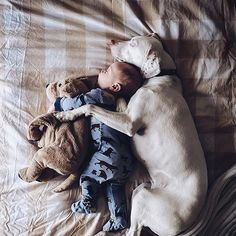 Isn`t it awesome?    Visit us: thebabylink.com      #kid #kids #baby
