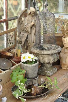 Love of gardening in aged grays.