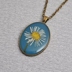 Real daisy in resin necklace with antique gold chain by PikLus, $15.00