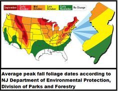 Missouri Fall Colors Peak Dates | Will Foliage Dazzle this Fall?