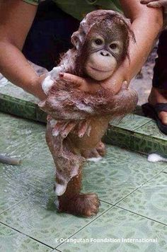 Bath Time-- cutie. :)