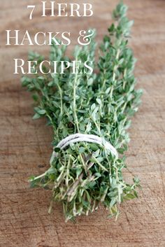 Herb Hacks and Recipes