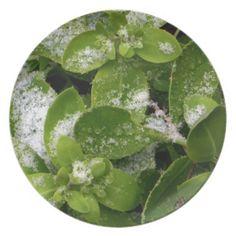 Snowflakes on Green Plant Round Melamine Plate