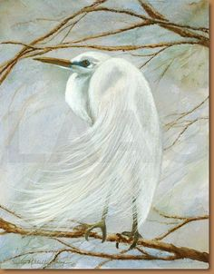 Great White Heron by Suzanne Antoon
