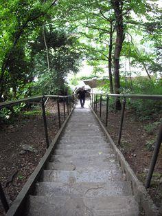 JacobsLadder - Cheddar Gorge. by Jo Hinson Cheddar Gorge, Somerset, Sidewalk, Places, Side Walkway, Walkway, Walkways, Lugares, Pavement