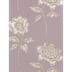 Buy Sanderson Anemone Wallpaper, DIOWAN108, Lilac Online at johnlewis.com