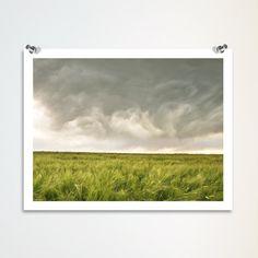 "landscape photography, barley field, storm clouds, green, gray, wall art, modern home decor - ""Restless Skies"" - 8x10 photograph. $18.00, via Etsy."