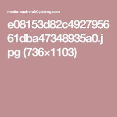 e08153d82c492795661dba47348935a0.jpg (736×1103)