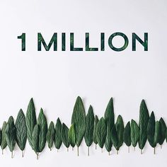 Over one million trees!With each LaCoupe orgnx purchase, @treesforthefuture has planted a tree.Thanks to you, ...
