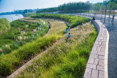 Yanweizhou Park by Turenscape | Jinhua City, China | 2014