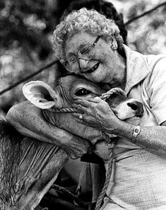 """To each his own,"" said the woman as she kissed her cow. ""Old Gal and her cow"" Photo by Phil Grout~ ♛ Cow Photos, Cow Pictures, Happy Pictures, Animal Pictures, Farm Animals, Cute Animals, Foto Poster, Amor Animal, Tier Fotos"