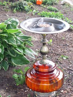 DIY Lamp Birdbath/Feeder - I took an old lamp and a chip-n-dip tray and turned it into a Lamp Birdbath/feeder. I spray painted the chip dip tray and let it dry.…