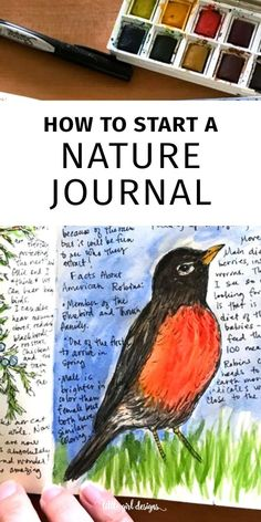 nature art I LOVE these ideas on how to start a nature journal. So simple even a child can keep their own. Im going to start keeping a nature journal with my daughter this year. I have so many ideas now. Garden Journal, Nature Journal, Journal Covers, Journal Pages, Journal Prompts, Pablo Picasso, Moleskine, Nature Activities, Indoor Activities