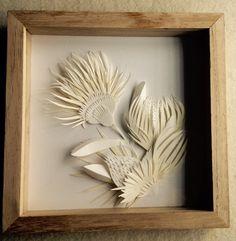 Botánica de papel