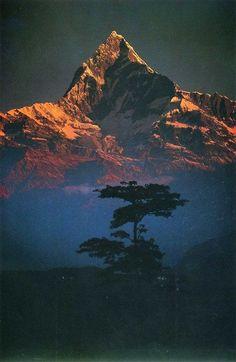 Machapuchare ( Fishtail Mountain) at dawn, Nepal Himalaya