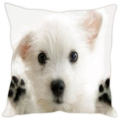 Sleep Nature's Puppy  Printed Cushion Covers Cushion Covers on Shimply.com