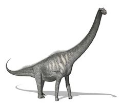 Today we share the Sauroposeidon on http://www.dinopit.com