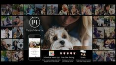 We launched our KickStarter Campaign to raise funds to develop our social media app. With your help, we can encourage more businesses to open their doors to our furry best friends so we can bring them wherever we go!  Please back our campaign and share with your friends. Every dollar will help us work toward creating a pup-friendly world!   We would greatly appreciate your support!