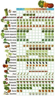 lista frutti di stagione - Cerca con Google