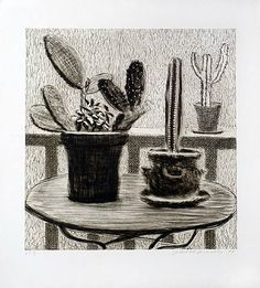 Dry point etching cacti aft David Hockney