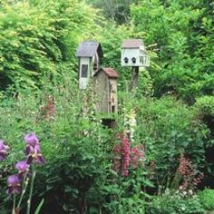 birdhouses in the garden make me feel I have friends coming to visit everyday