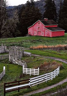 Red and white, such a beautiful setting and barn!  Love the fencing too.