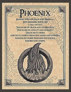 Phoenix for the Air (E) pole Witchcraft Spell Books, Wiccan Spell Book, Magick Spells, Mythological Creatures, Fantasy Creatures, Spiritual Animal, Spiritual Life, Animal Spirit Guides, Spirited Art