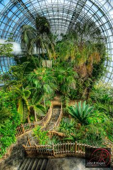 Crystal bridge tropical conservatory in OKC