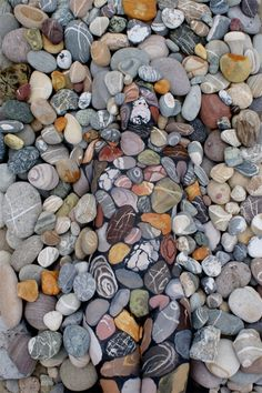Painted body art...when you see it... stones, optical illusion