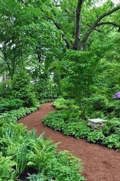 Garden Landscaping Rectangle Forest Gardening With Trees And Ground Cover : Environmentally Forest Gardening In Your Yard.Garden Landscaping Rectangle Forest Gardening With Trees And Ground Cover : Environmentally Forest Gardening In Your Yard Forest Garden, Woodland Garden, Garden Paths, Forest Hill, Woodland Park, Forest Plants, Garden In The Woods, Garden Pond, Forest Park
