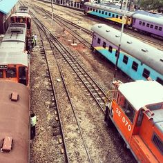Colourful trains along converging railroads Pushpa Padayichie Walks, South Africa, Trains, Live, Board, Color, Beautiful, Africa, Colour