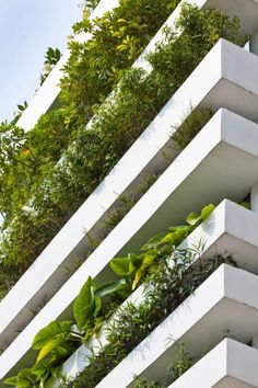 Vegetation as solar protection, Stacking green [093] | filt3rs