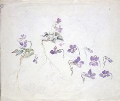 Beatrix Potter - An undated, unfinished watercolor with pencil depiction of violets | Illustrations Copyright © Frederick Warne &Co., Reproduced by Permission of Frederick Warne & Co.