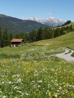 Das perfekte Sommerwetter lädt zum Picknick in der Natur ein.   www.hotelauszeit.ch www.facebook.com/hotelauszeit www.instagram.com/hotelauszeit