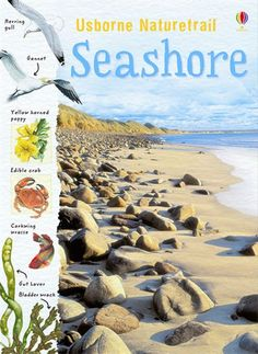Seashore  An introduction to the all the amazing plants and animals to be found on the seashore. Packed with facts and clues to look for to discover the secrets of seashore life. Includes practical step-by-step instructions for gently picking up crabs, making a rock pool viewer and much more. With internet links to recommended websites with seashore games, activities and online identification guides.