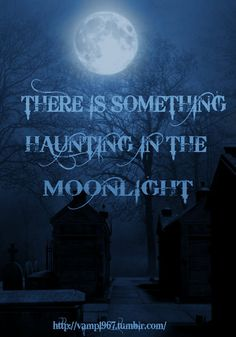 ~favorite time of day~ Halloween Wishes, Halloween Quotes, Halloween Art, Halloween Signs, Disney Halloween, Happy Halloween, Good Night Moon, Night Time, Mystic Moon