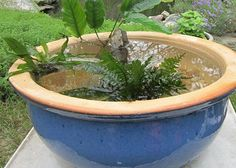 Want the beauty of a water feature but don't have the space for a pond? Make a water bowl!