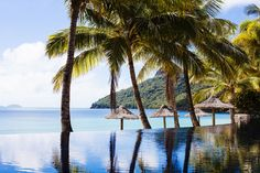 The infinity pool at Hamilton Island's Beach Club - pure tropical island bliss. Best Holiday Places, Beach Honeymoon Destinations, Honeymoon Ideas, Australia Hotels, Queensland Australia, Hamilton Island, Island Pictures, Hotel Pool, Water Activities