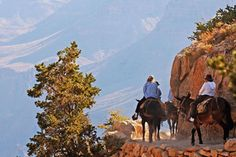pin 8 #bareMinerals #READYtowin   My bucket list - ride a mule down the Grand Canyon  Google Image Result for http://www.familyvacationcritic.com/images/fampics/grand-canyon-bright-angel-trail.jpg