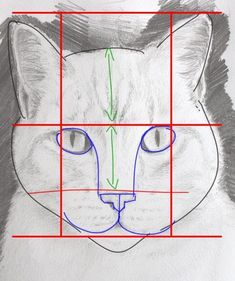 Drawing Portraits - dessiner un portrait de chat simplement Discover The Secrets Of Drawing Realistic Pencil Portraits.Let Me Show You How You Too Can Draw Realistic Pencil Portraits With My Truly Step-by-Step Guide. Cat Drawing, Drawing People, Drawing Sketches, Painting & Drawing, Drawing Tips, Drawing Ideas, Sketching, Animal Drawings, Pencil Drawings
