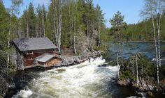 Nature Finland
