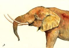 "Elephant head safari africa african color animal wildlife 11x8"" 29x21 cm art original Watercolor painting by Juan bosco"