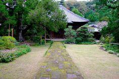 悩んだ末、参道を歩き切った先には素敵な景色が待っていました❕ 彩りどりに苔むした石の参道は圧巻でした。 中には入れませんでしたが、この参道を踏み付ける訳にもいかないので、致し方ないですね❕ だけど、実際の色が再現出来ないのがもどかしい❗️ #寿福寺  #鎌倉  #苔むした  #苔  #fujifilm  #xt10  #写真好きな人と繋がりたい  #写真撮ってる人と繋がりたい  #ファインダー越しの私の世界  #東京カメラ部  #tokyocameraclub  #igersjp  #igers  #japan