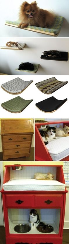 DIY cat bed , feeding station in top. I'd do the litter box below with a curtain over it.