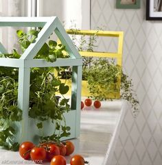 Ziołowy ogródek będzie się dumnie prezentował w ozdobnej doniczce. Dekoracyjny domek ma wiele zastosowań. http://zrobiszsam.muratordom.pl/dekoracje/w-domu/pomysl-na-domowy-ziolowy-ogrodek-ozdobna-doniczka-krok-po-kroku,12_213.html