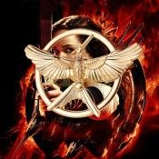 The Hunger Games II Catching Fire Fly Bird & Mock Bird Vintage Brooch Pin