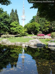 http://www.hamburg-fotos-bilder.de/ Japanischer Garten (japanese garden) in Planten un Blomen Hamburg mit Spiegelung im Teich vom Hamburger Fernsehturm.