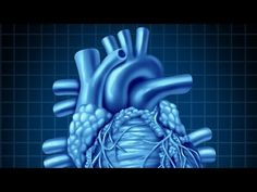 Human Physiology - Central Venous Pressure, Part 1 - YouTube