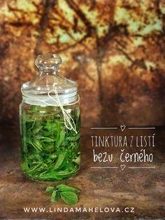 Tinktura z bezu černého Korn, Life Is Good, Diy And Crafts, Remedies, Herbs, Homemade, Health, Plants, Gardening